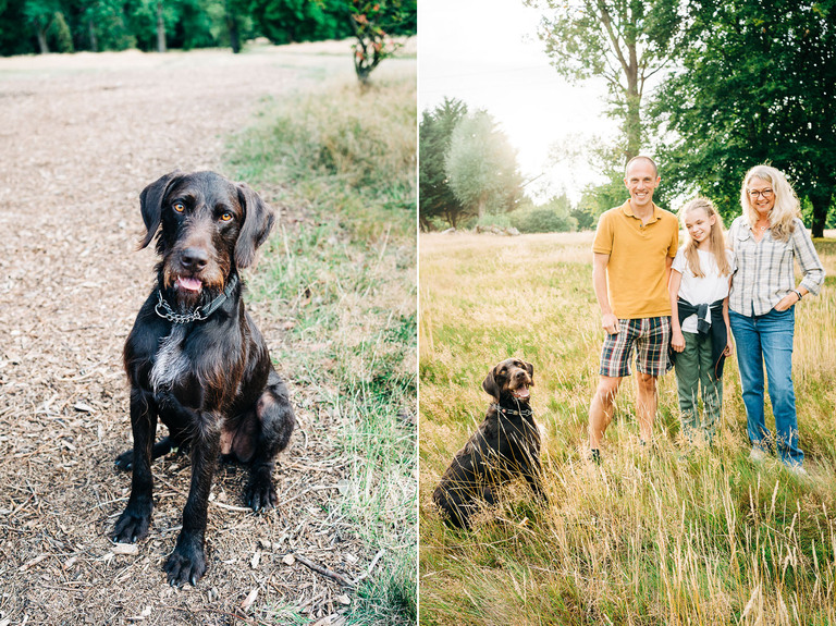 A Sunset Family Lifestyle Shoot With Hector The Dog & Family 1